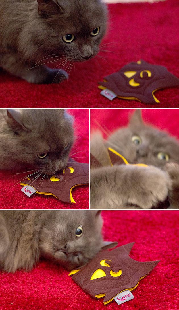 mao-chouette-catnip