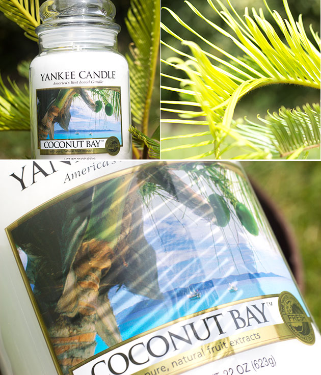 Yankee Candle - Coconut Bay