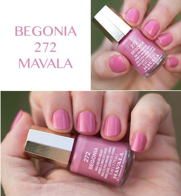 begonia-mavala