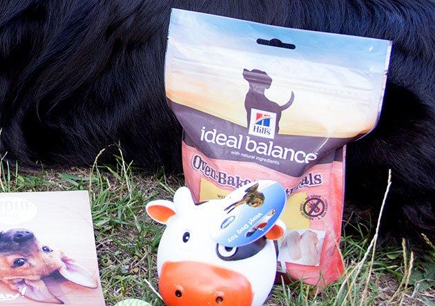 ideal-balance