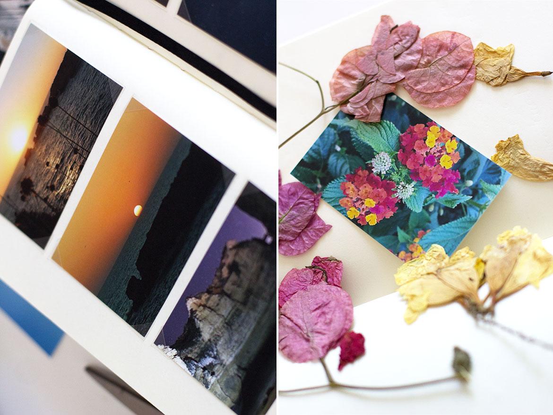 Carnet de voyage exemple fleurs séchées