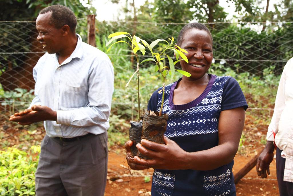 Tredom au Kenya
