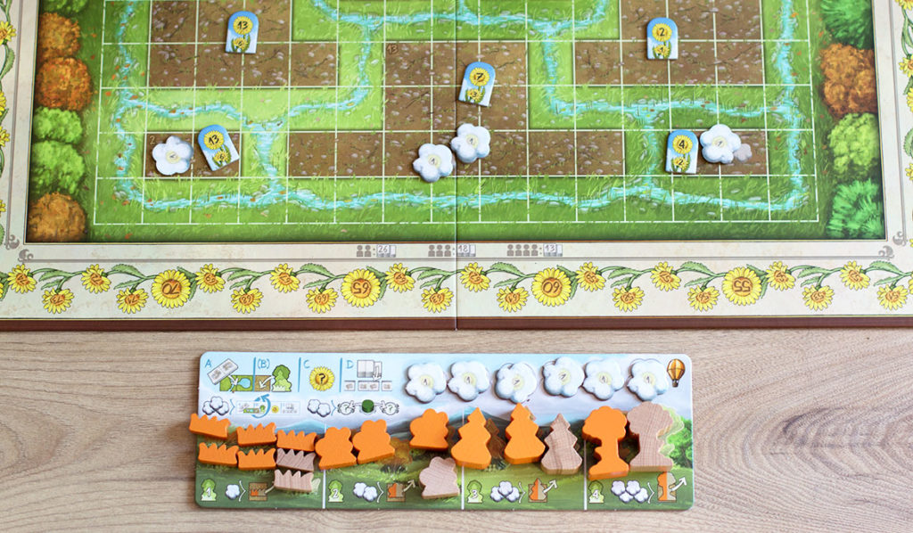 Ludum box Renature jeu société
